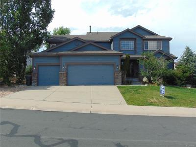 Castle Rock Single Family Home Active: 1061 Switch Grass Drive