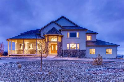 Castle Rock CO Single Family Home Active: $1,475,000