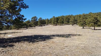 Golden Residential Lots & Land Active: Nighthawk Pass Road