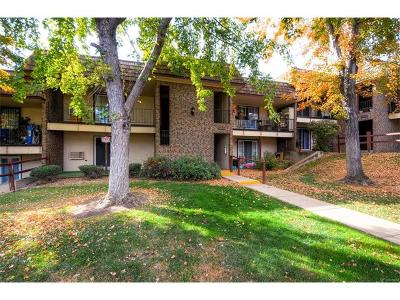Condo/Townhouse Sold: 4539 South Lowell Boulevard #C