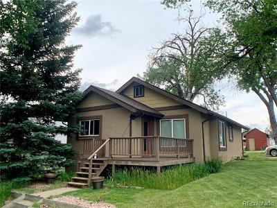 Elbert County Single Family Home Active: 520 Sioux Avenue
