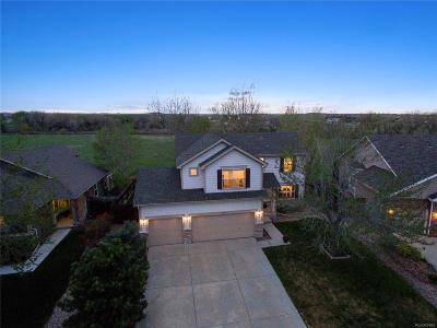 Ironstone, Stroh Ranch Single Family Home Under Contract: 19019 East Hollow Creek Lane