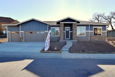 Loveland Single Family Home Active: 533 Deer Meadow Drive