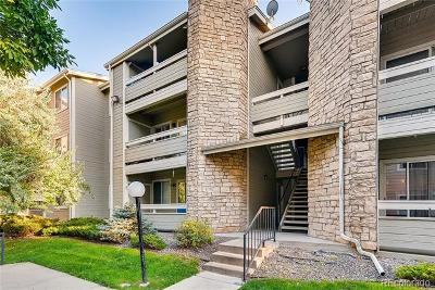 Aurora Condo/Townhouse Active: 1094 South Dearborn Street #204
