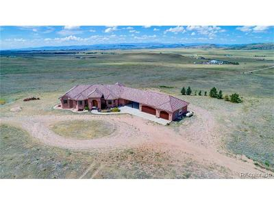 Wellington Single Family Home Active: 20358 Cattle Drive