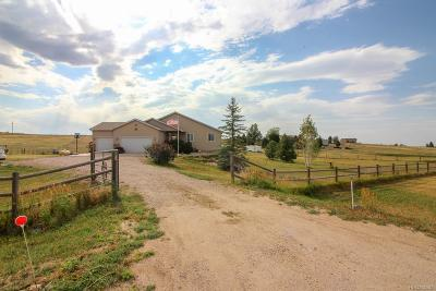 Elbert County Single Family Home Active: 43249 Saddlehorn Drive
