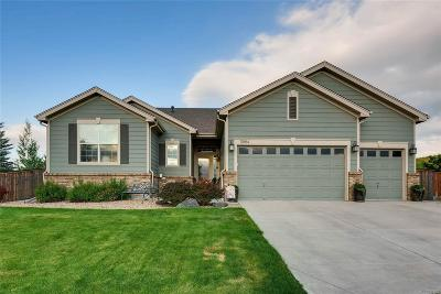 Douglas County Single Family Home Active: 11884 Cattle Lane