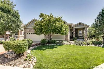 Heritage Eagle Bend Single Family Home Active: 8169 South Valdai Court