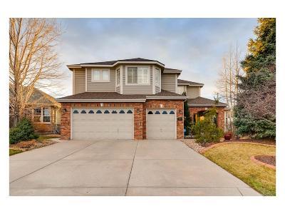 Aurora Single Family Home Under Contract: 22466 East Ridge Trail Drive
