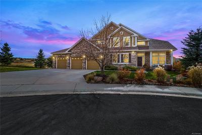 Castle Rock Single Family Home Under Contract: 3041 Starling Court