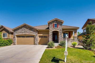 Highlands Ranch Single Family Home Active: 10438 Skyreach Way