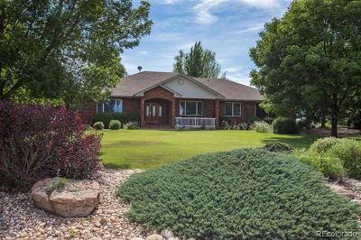 Windsor Single Family Home Active: 8886 Longs Peak Circle