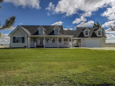 Adams County Single Family Home Under Contract: 4032 Defoe Street