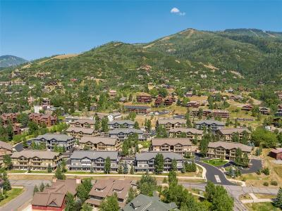 Steamboat Springs Condo/Townhouse Active: 3375 Columbine Drive #203