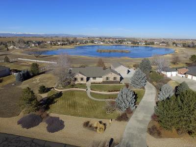 Mead Single Family Home Under Contract: 214 Mulligan Lake Drive