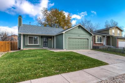 Denver Single Family Home Active: 14541 Andrews Drive
