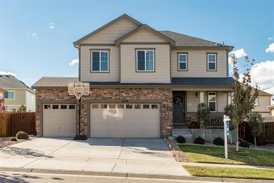 Arapahoe County Single Family Home Active: 6193 South Jackson Gap Court
