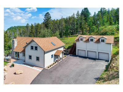 Morrison Single Family Home Under Contract: 10150 City View Drive