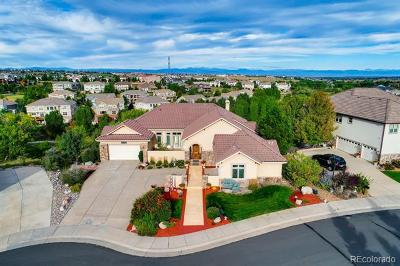 Aurora CO Single Family Home Active: $1,295,000
