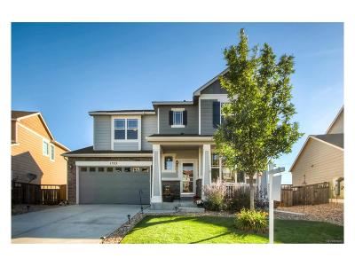 Castle Rock Single Family Home Active: 1353 Sky Rock Way