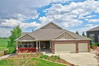 Broomfield Single Family Home Active: 14068 Willow Wood Court