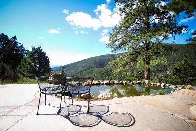Conifer Single Family Home Under Contract: 23906 Bent Feather Road