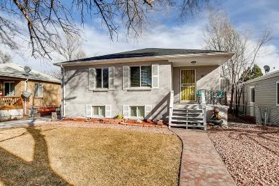 Single Family Home Active: 32 Jay Street