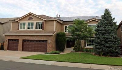 Highlands Ranch Single Family Home Active: 10503 Grizzly Gulch