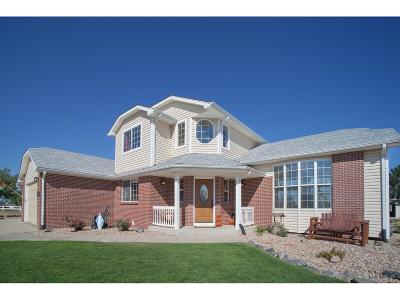 Adams County Single Family Home Active: 28735 East 163rd Place