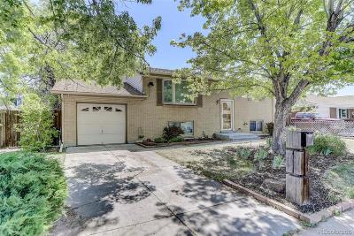 Arvada Single Family Home Active: 6462 Vrain Street