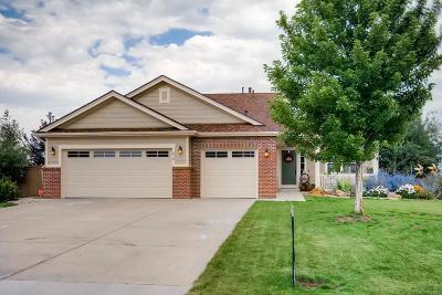 Castle Rock Single Family Home Active: 810 Ellsworth Court