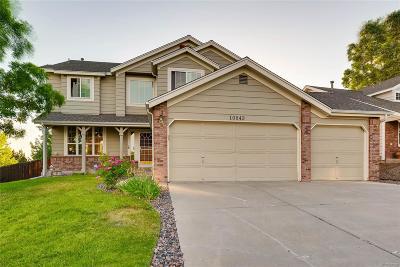 Parker Single Family Home Active: 10943 Parker Vista Way