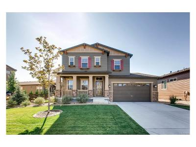 Douglas County Single Family Home Active: 14992 Rider Place