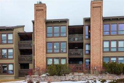 Steamboat Springs Condo/Townhouse Active: 2700 Village Drive #203