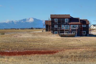 Elbert Single Family Home Under Contract: 13710 Buffalo River Trail