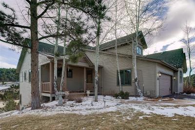 Evergreen Condo/Townhouse Under Contract: 1220 Big Sky Court