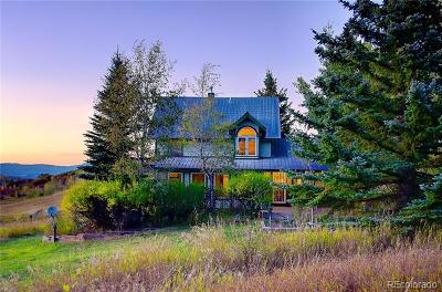 Steamboat Springs CO Single Family Home Active: $845,000