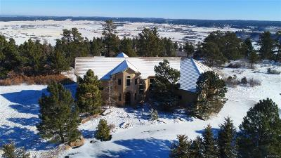 Douglas County Single Family Home Active: 1434 East Rim Road