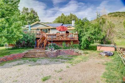 Steamboat Springs Single Family Home Active: 27320 County Road 52e