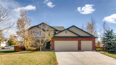 Castle Rock Single Family Home Active: 3902 Maverick Court