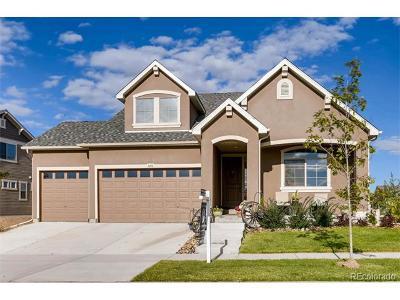 Denver Single Family Home Active: 5458 Fundy Street