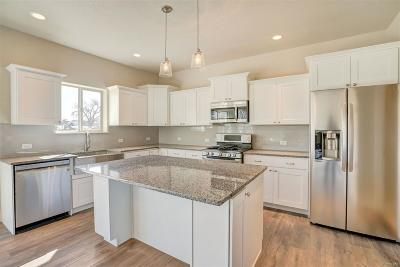 Frederick Single Family Home Under Contract: 124 Santiago Street