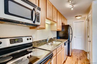 Denver Condo/Townhouse Active: 529 Washington Street #203