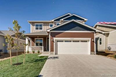 Denver Single Family Home Active: 7951 Tejon Street