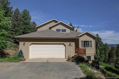 Evergreen Single Family Home Under Contract: 1575 Santa Fe Mountain Road