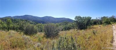 Steamboat Springs Residential Lots & Land Active: Routt County Rd 24