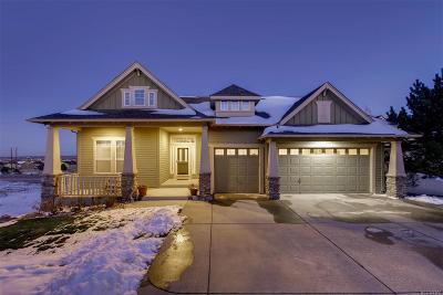 Single Family Home Active: 2086 Wild Star Way