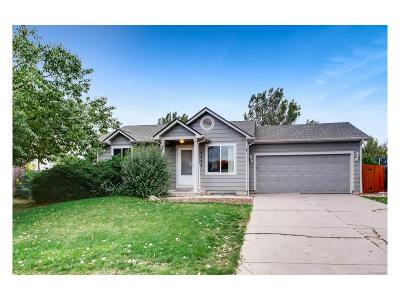 Castle Rock Single Family Home Under Contract: 5304 Willow Court