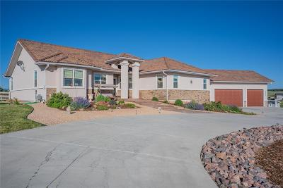 El Paso County Single Family Home Active: 20448 Hunting Downs Way
