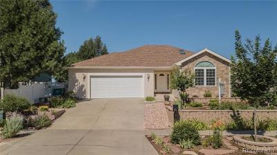 Berthoud Single Family Home Active: 91 Sioux Drive